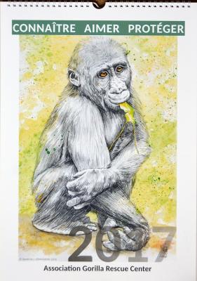 Calendrier gorillacenterrescue