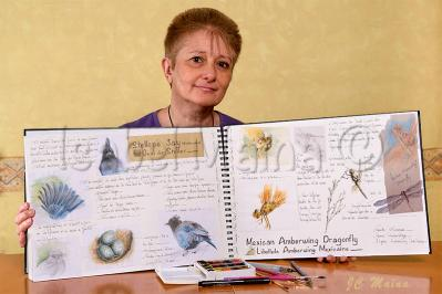 Isabelmaina carnet